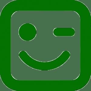 guino-de-la-cara-sonriente_318-60261